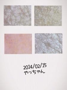 20140221-205510.jpg